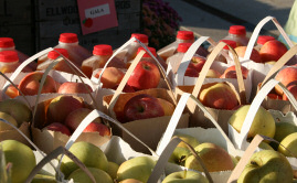 Bags of apples and gallons of apple cider from The Orchard at the North Market in Columbus Ohio